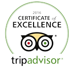 Ovation on tripadvisor